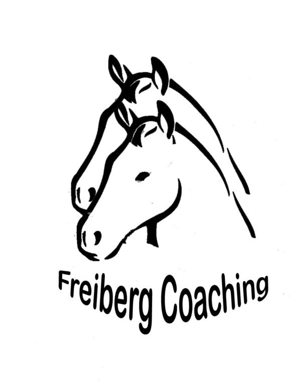 Freiberg Coaching